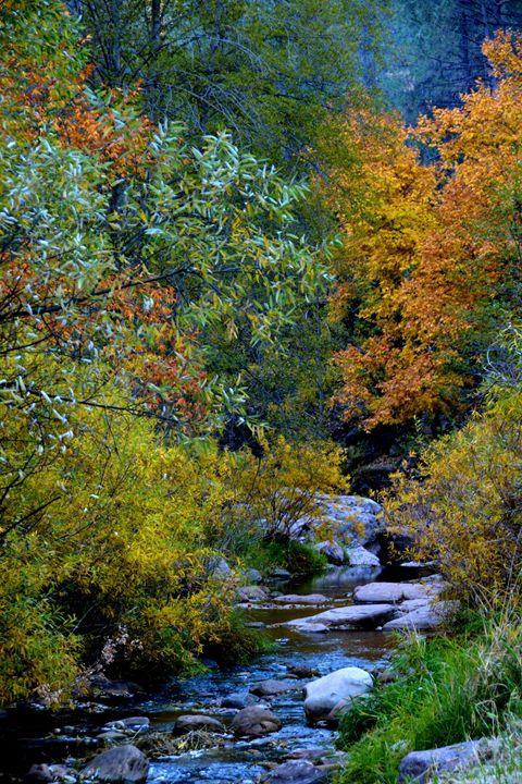 Fall Colors - Richard W. Jenkins Gallery