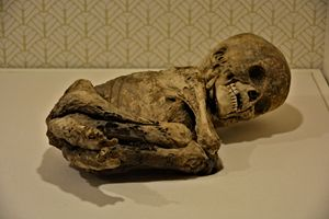 Ancient baby Skelton - Richard W. Jenkins Gallery