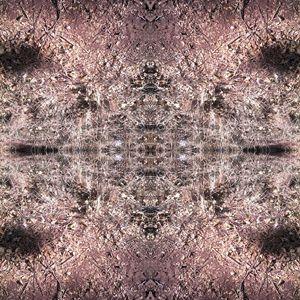 Pattern tera