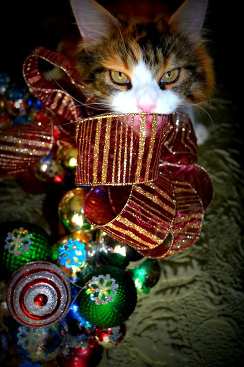 Jazzy Christmas - Ethereal Organics...diane montana jansson