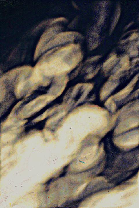 Shadows - Ethereal Organics...diane montana jansson