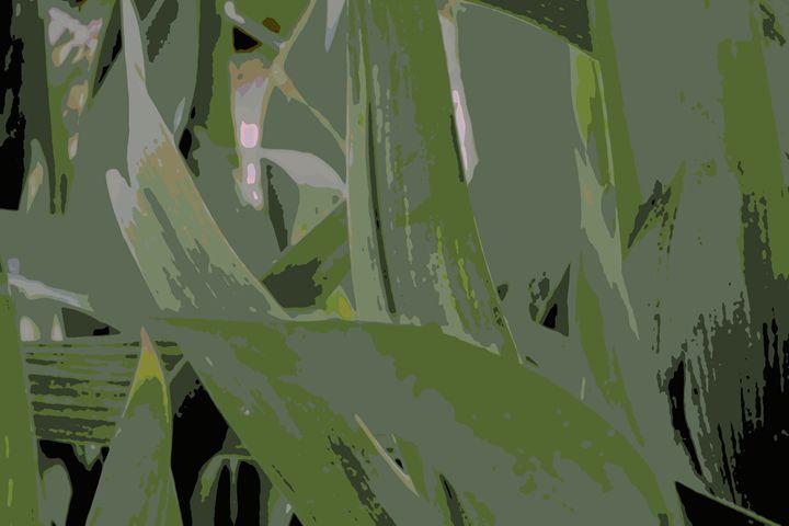 What An Iris Leaves - Ethereal Organics...diane montana jansson