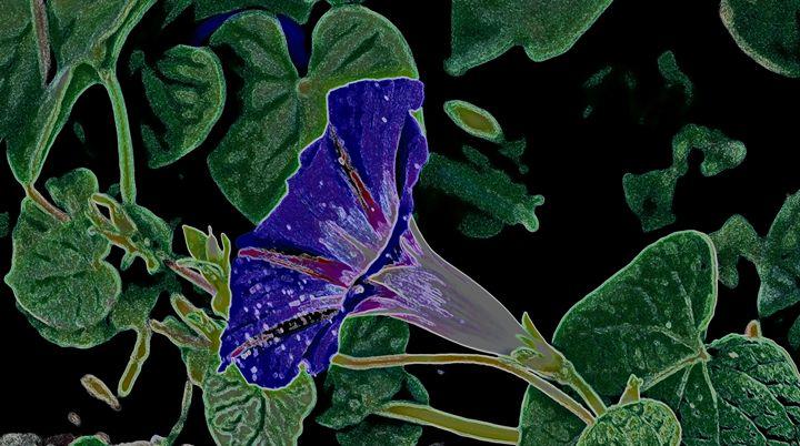 Good Morning V - Ethereal Organics...diane montana jansson
