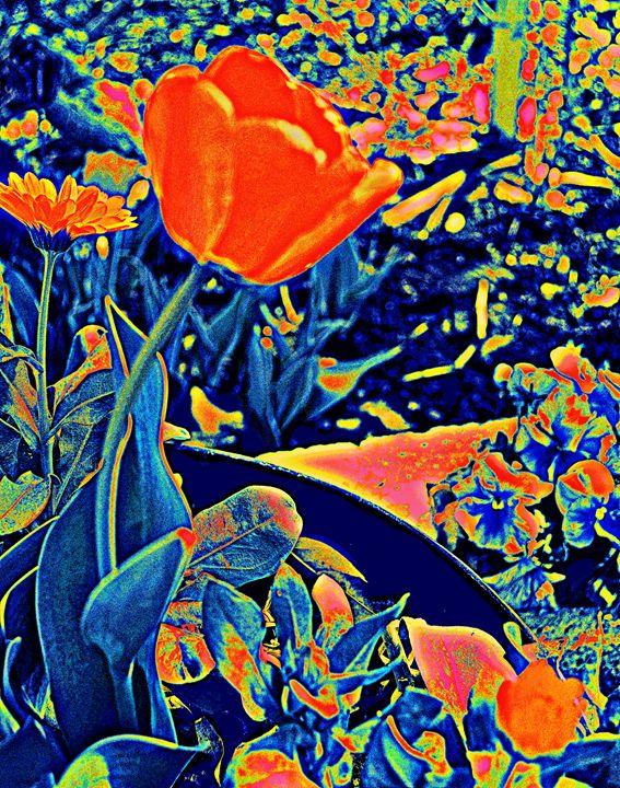 Vibrating Spring - Ethereal Organics...diane montana jansson