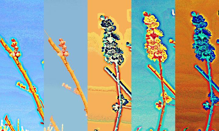 Fragile Spring - Ethereal Organics...diane montana jansson