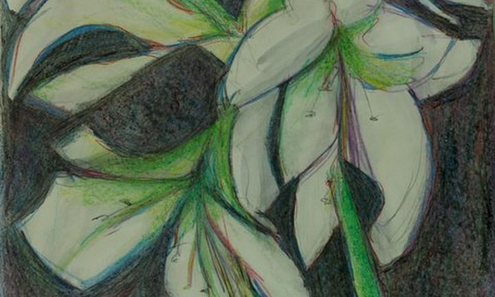 White Amaryllis - Ethereal Organics...diane montana jansson