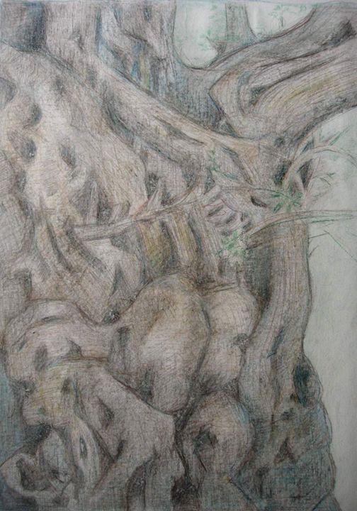 Spirit Of The Gran Dad Tree - Ethereal Organics...diane montana jansson