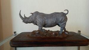 White Rhino - NH Art