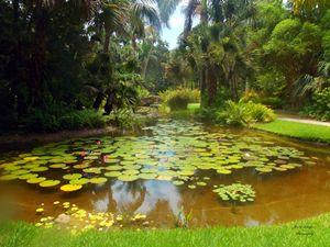 Serenity Reflections
