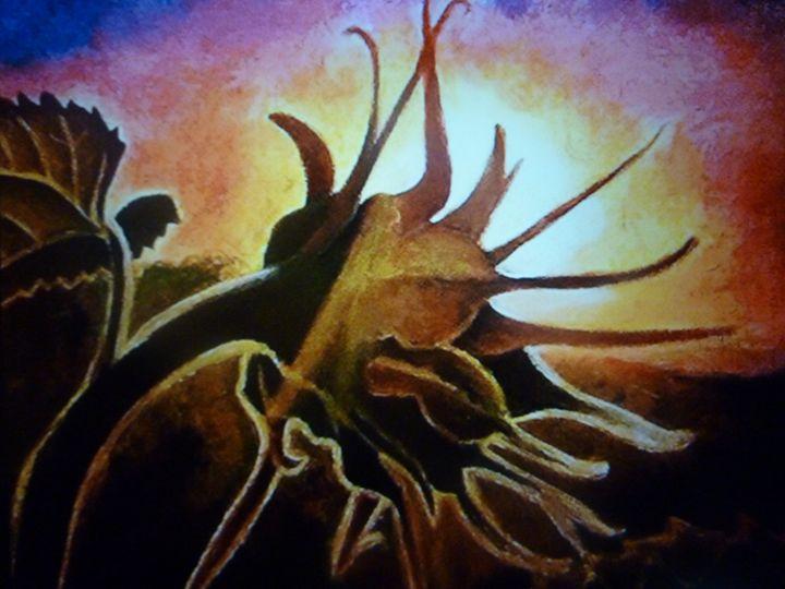 sunflower sunset - josie ogle
