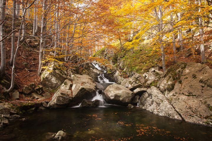 Waterfall in autumn - Max Barattini | PHOTO