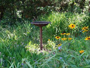 Garden Birdbath