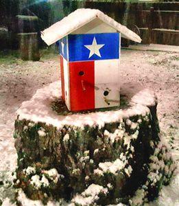 Texas Snow - StyleZ