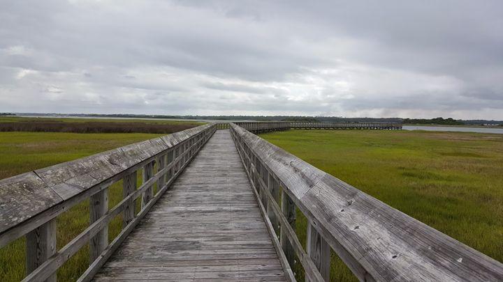 Walk on a NC marsh straight right - Paula Ray
