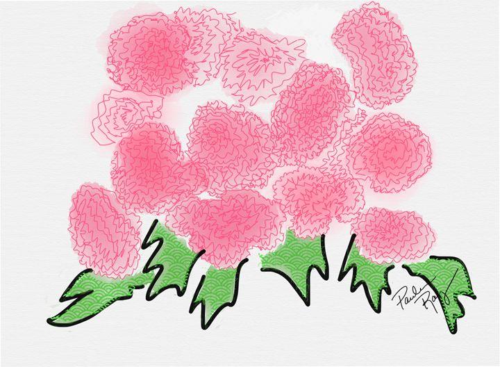 Carnations - Paula Ray