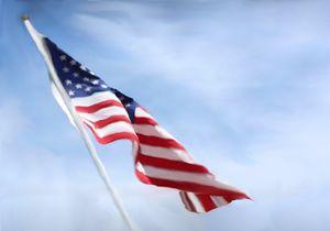 Flag for Dana