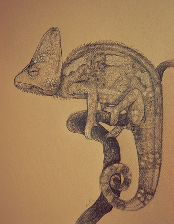 Furcifer oustaleti - Itsredribbon