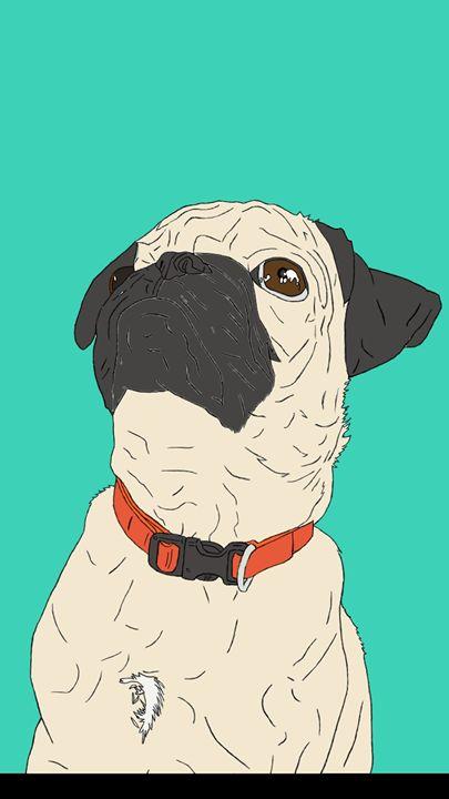 Pug puppy - Kortenay's Gallery