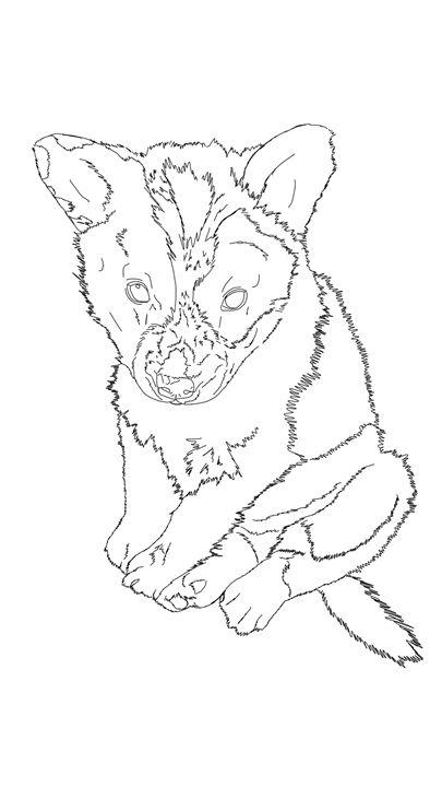 Puppy archer - Kortenay's Gallery