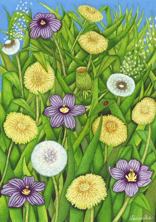 Dandelions & blue eyed grass flowers - Melissa White (Easelartworx)