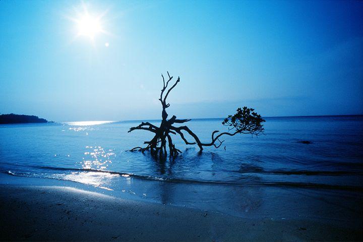 andaman islands 7 - easywind