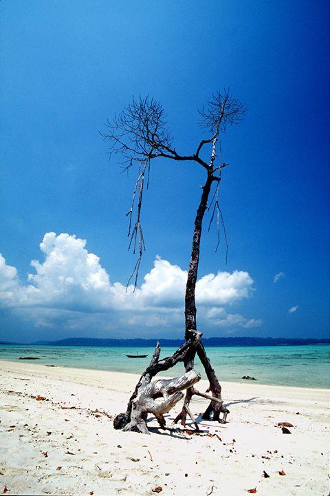 andaman islands 6 - easywind