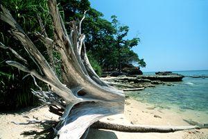 andaman islands 14