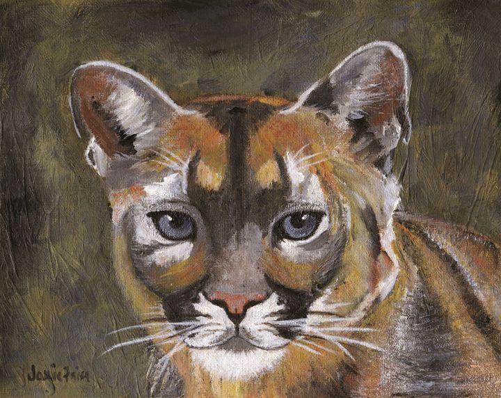 Mountain Cat - Vivid Perceptions by Jamie Frier