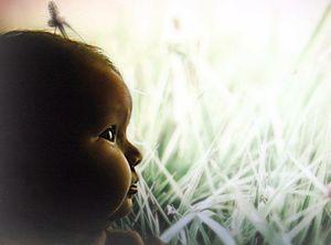 Baby Girl in Grassy Field