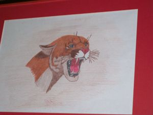 SIGNED CAT DRAWING,MATTED AND FRAMED