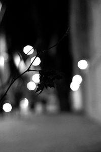 Street lights (blurry)