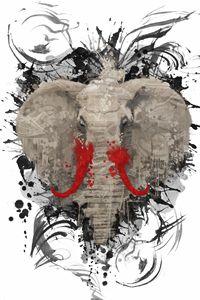The Missing Elephant