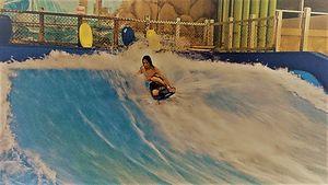 Surf - The Hoffman Studio's