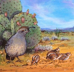 Baby Quail with Mother - Anne Traynor