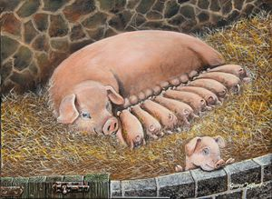 Sad little porky