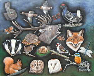 A  selection of British wildlife - george telford