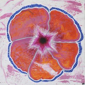 Just Hibiscus 1