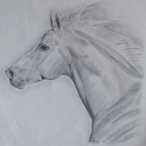 Palomino Running Horse