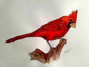 Red Cardinal - ArtbyJosephB