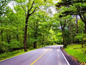 Grandfather Road