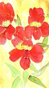 Alstroemeria - Phoenix Art Works
