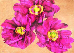 Thimbleweed - Phoenix Art Works