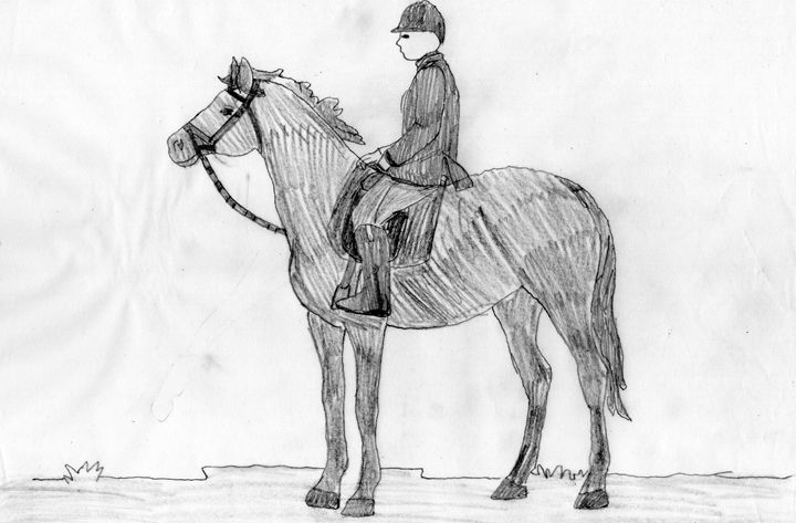 a nice ride on a horse - heathers cool things