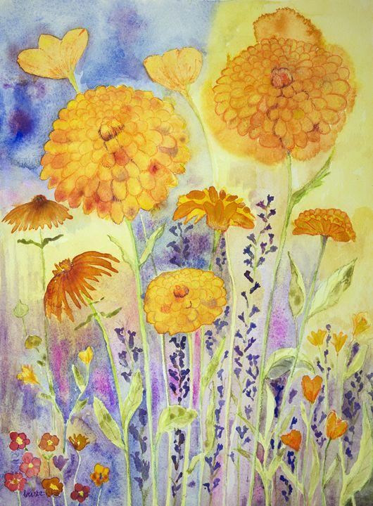 Marigold in a sunny field. gvp1533 - BRISTE