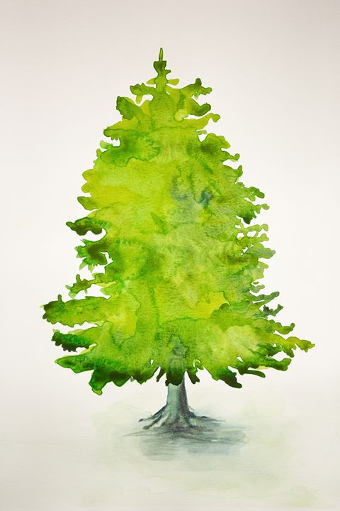 Christmas tree with structure - BRISTE