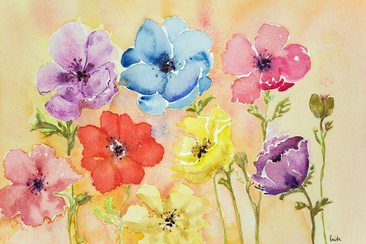 Different colored anemones. - BRISTE