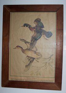"Wood Ducks, Watercolor, 24 1/2"" X 18"