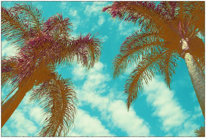 Colored Palms - Air California