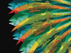 Fish Vortex, Radiant Short