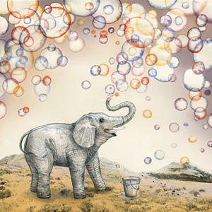 Bubble dreams